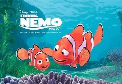 海底总动员2中的尼莫和马林,现实中竟是雌雄同体?